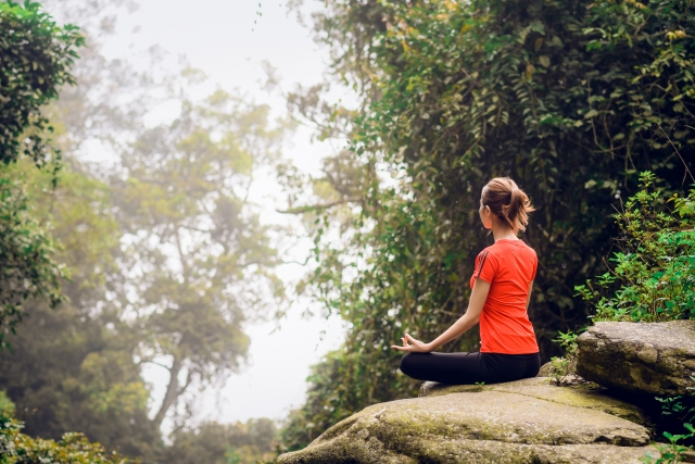 11月コラム【魂の瞑想】について | からだの寺子屋